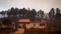 броят-на-жертвите-на-горските-пожари-в-португалия-достигна-62-46226.jpg