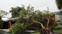 ураганът-quot;ирма-quot;-сее-разруха-в-карибския-регион-и-сащ-48942.jpg