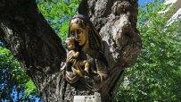 варненски-клошар-превърна-сухо-дърво-в-странна-арт-инсталация-49915.jpg