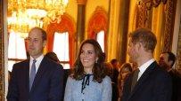 вижте-бременната-херцогиня-катрин-49905.jpg
