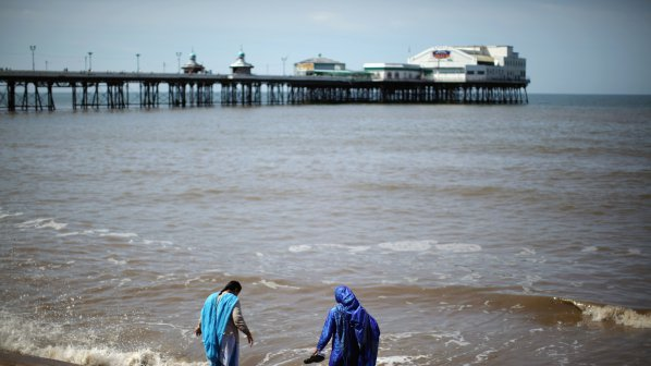 Поредно предупреждение: Масово чезнат видове в Световния океан