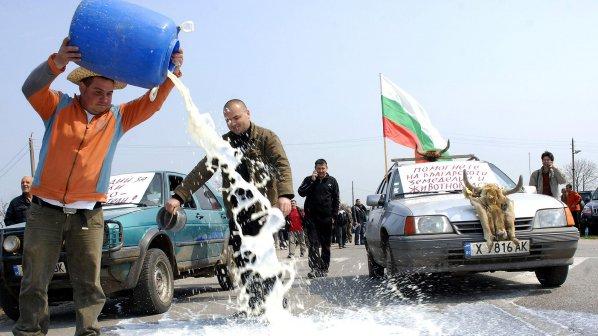 Млекопреработването в сивата икономика