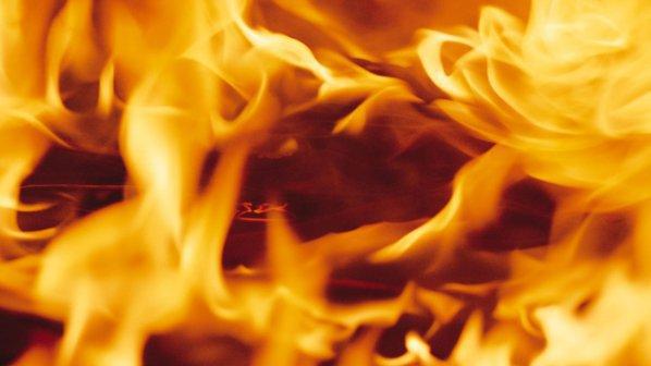 Пожар за малко да унищожи вековна гора