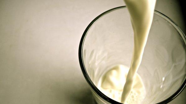 Възбраната за продажба на мляко от фермери в три села в Ловешка област остава