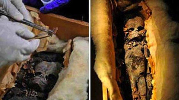 Откриха извънземно в старинна гробница