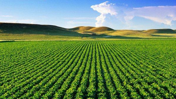 Изплащането на агросубсидиите може да се забави