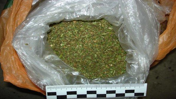 Над 2 кг марихуана иззеха при акции в Дряново и Севлиево