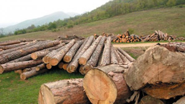 Бракониери са нападнали служители на горското стопанство в Самоков
