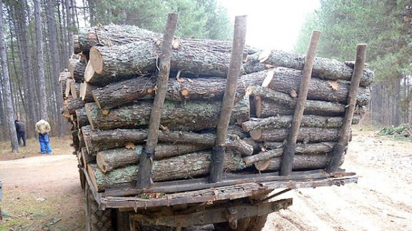 Крадци на дърва нападнаха полицаи, за да освободят техен човек