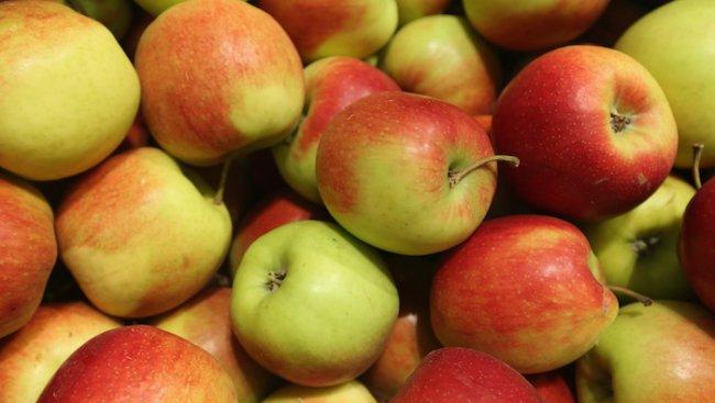 Русия забрани реекспорта на плодове от България