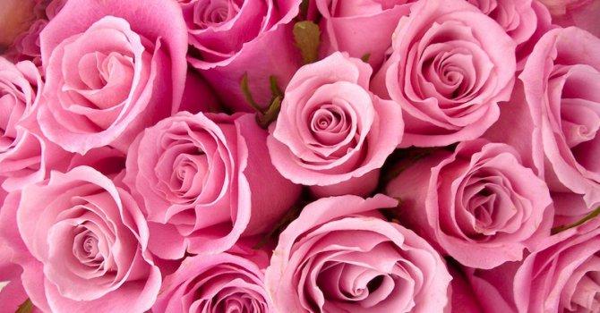 Строят новия Музей на розата в Казанлък