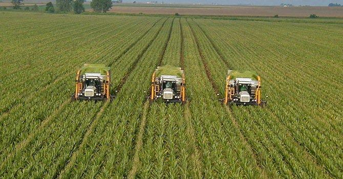 Отпускат 25 млн. лева на фонд Земеделие за общински проекти