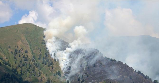 Пожарът в Рила овладян от всички страни (снимки)