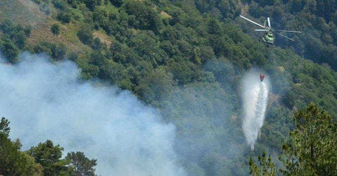 Пожарът в Рила е ликвидиран, увериха от пожарната в Кюстендил (снимки)
