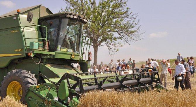 Цената на пшеницата пада, а на хляба - не