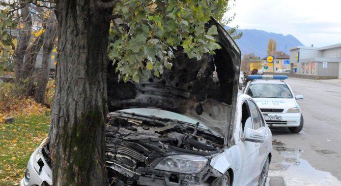 Младеж без книжка се заби в дърво край Разград