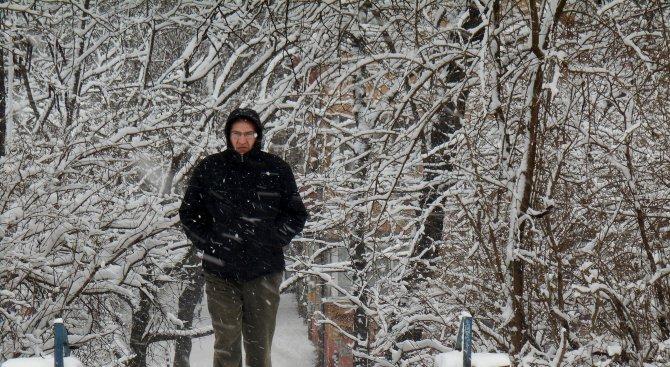 Снежно утро в Северозападна България