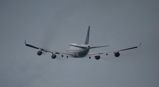 Плъх и куче забавиха пътнически полети на индийски самолети