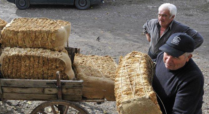 Няма повод за протести на производителите на тютюн, обяви Цветан Филев