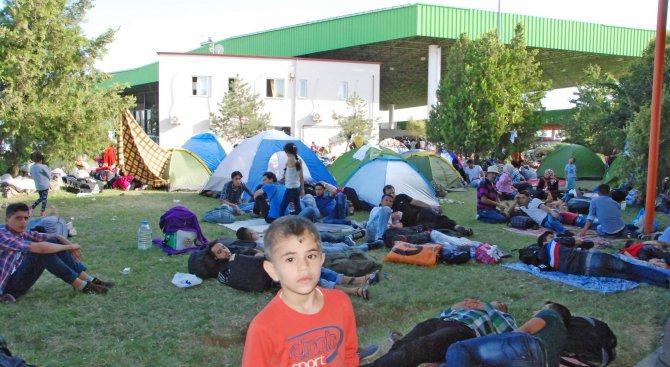 Бежанците не искат да учат български