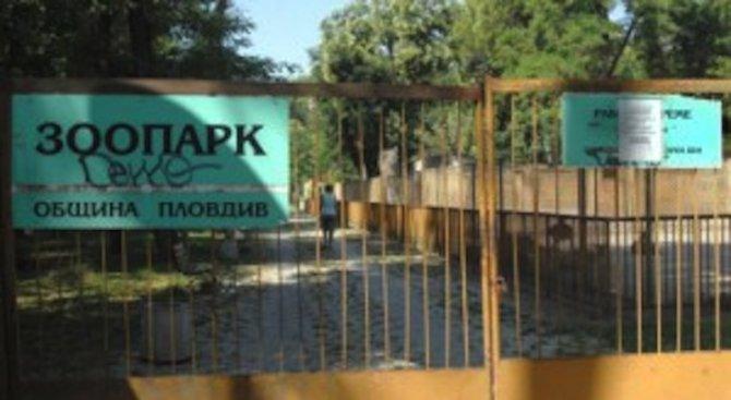 22 места за животни в новата зоологическа градина в Пловдив