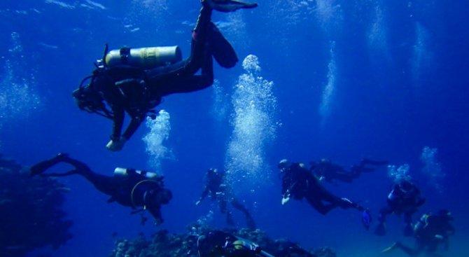Има живот в земната кора под океана