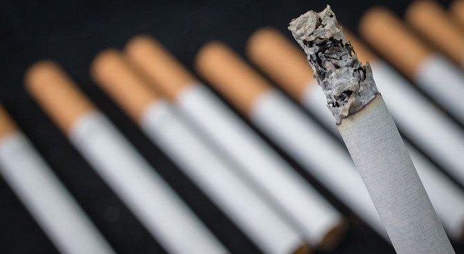 Задържаха мъж за контрабандни цигари и канабис