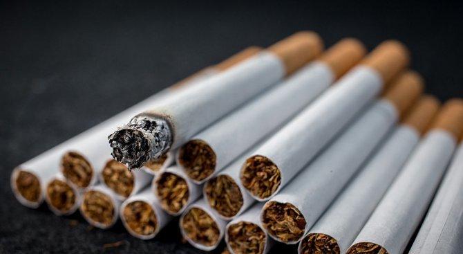 Над 107 000 къса контрабандни цигари са задържани в Сливен