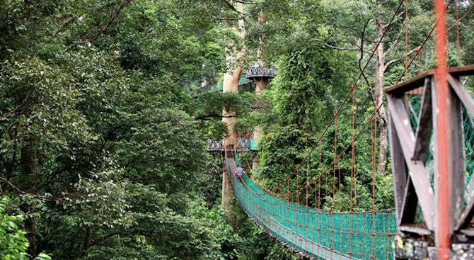 11 височинни маршрута за любители на природата