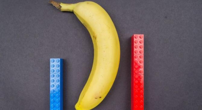 Колко голям e средностатистическият пенис?