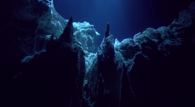 Откриха десетки нови видове на дъното на Марианската падина (снимка+видео)