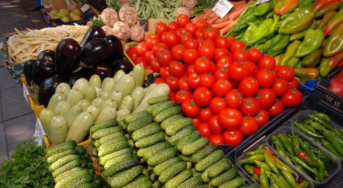 Родни производители: Трябват правила и контрол на вноса на плодове и зеленчуци