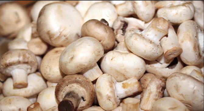 БАБХ не откри атропин в проби от гъби, яхния и подправки