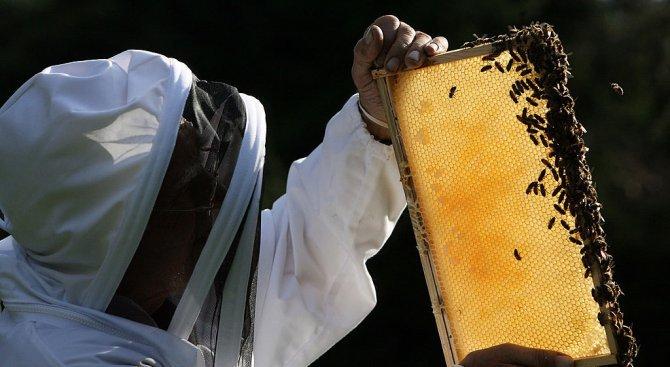 Пчелари от Гоце Делчев опитаха да блокират пътя за Гърция