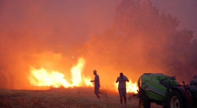Над 2 000 декара горска територия е засегната от пожара до с. Изворово