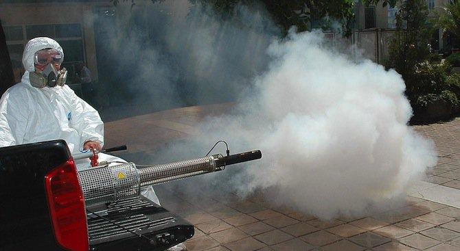 Предприемат се мерки срещу нашествието на насекоми в шуменското село Ивански