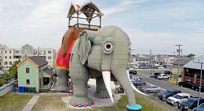 Сгради от цял свят, приличащи на животни