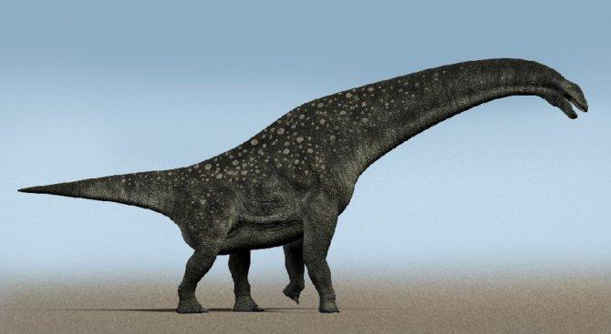 Следа от динозавърска стъпка откриха в пустинята Гоби