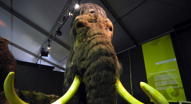 Едно кътче от България ни връща 5 млн. години назад