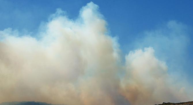 Над 1 милиона хектара от аржентинската степ са обхванати от пожари