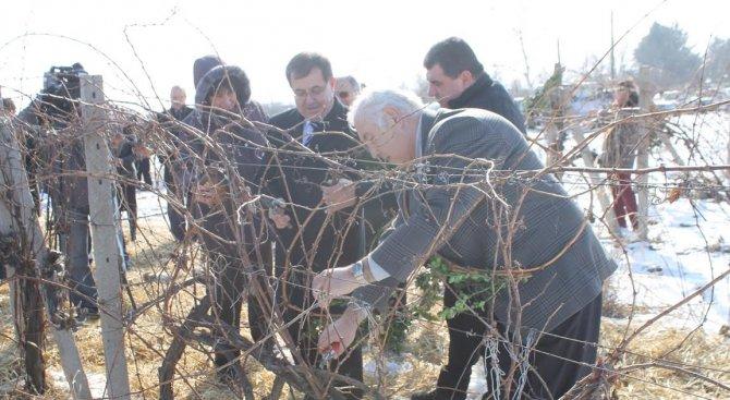 България ще изнесе близо 62 млн. литра вино