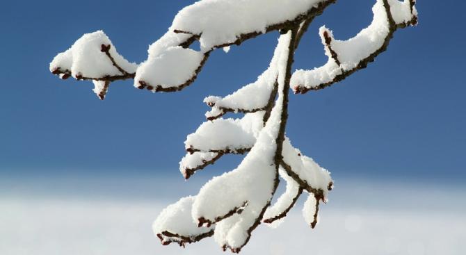 Чилийската столица е затрупана от сняг