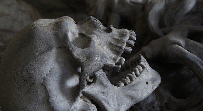 Учени: Смъртта е предвидима