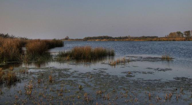 В Шабленското езеро е изпробвана амфибия за косене на тръстика