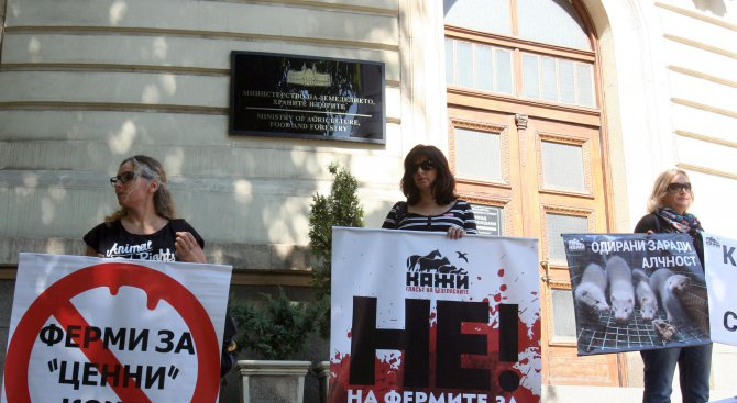 Вегани защитават норки с протест пред земеделското министерство (снимки)