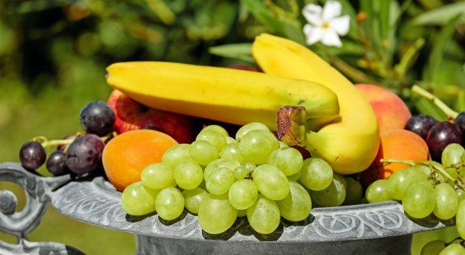 365 доставчици снабдяват училищата с плодове, зеленчуци и мляко