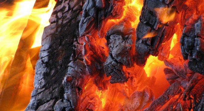 Сигнал за пожар в цех вдигна столичната пожарна на крак (обновена+снимки)