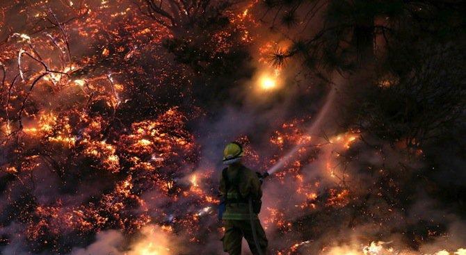 Пожар избухна на пазар за дрехи на едро в Ростов на Дон (видео)