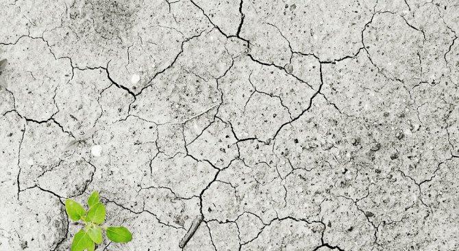 Климатичните промени вредят на глобалното здраве
