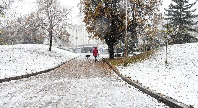 Най-много сняг е паднал в столицата